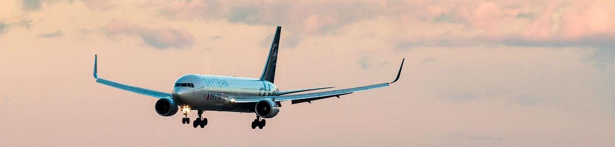 Fly fyldt med sprogrejsende