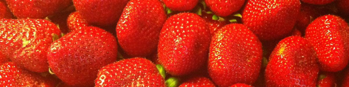 Jordbær- frugt - sundhed